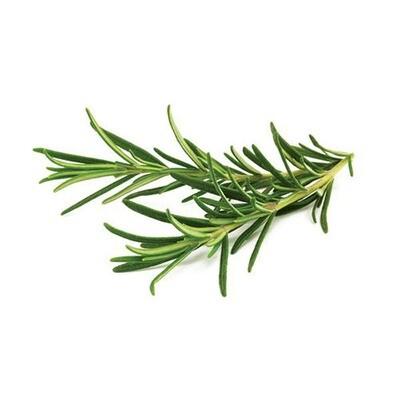 Rosemary, Kilo or Hydro 2lb.