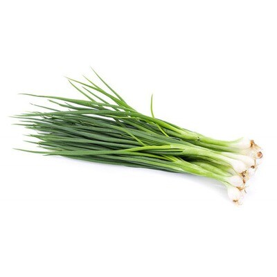 Scallions, 48ct. Iceless
