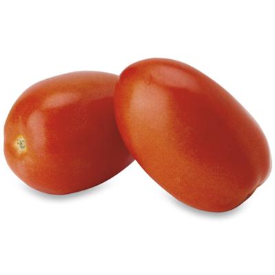 Tomato, Plum 25lbs. XL Lipman