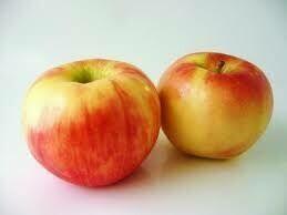 Apples, Honey Crisp 88/100 WA