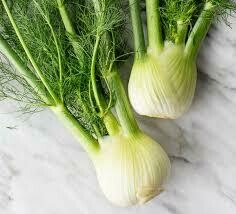 Fennel, 24ct.