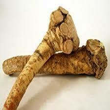 Horseradish Root, 5#