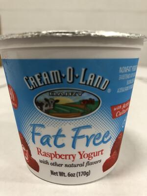 Yogurt, 6oz. Raspberry