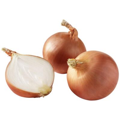 Onions, Spanish 50#