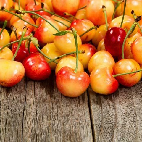Cherries Yellow Rainier