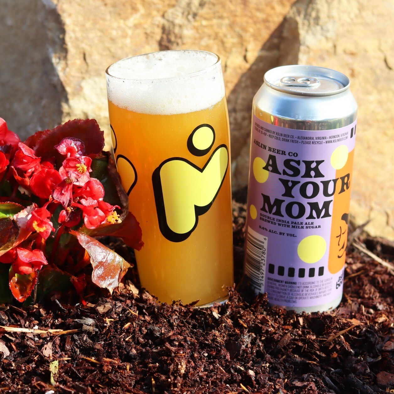 Ask Your Mom! (4-Pack) DIPA
