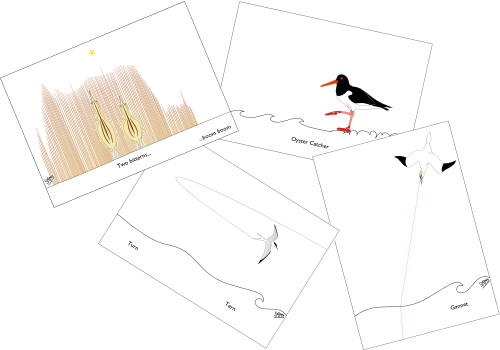 Birds GC1