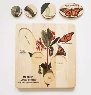 Montessori Monarch Life Cycle Puzzle Board