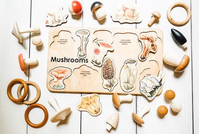 Montessori Mushroom Puzzle