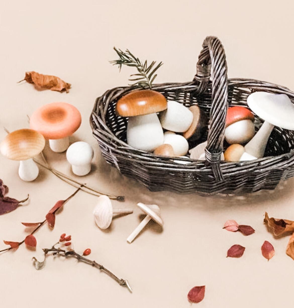 Forest Mushroom Forager Basket