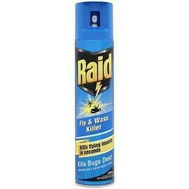 RAID FLY AND WASP 300ML