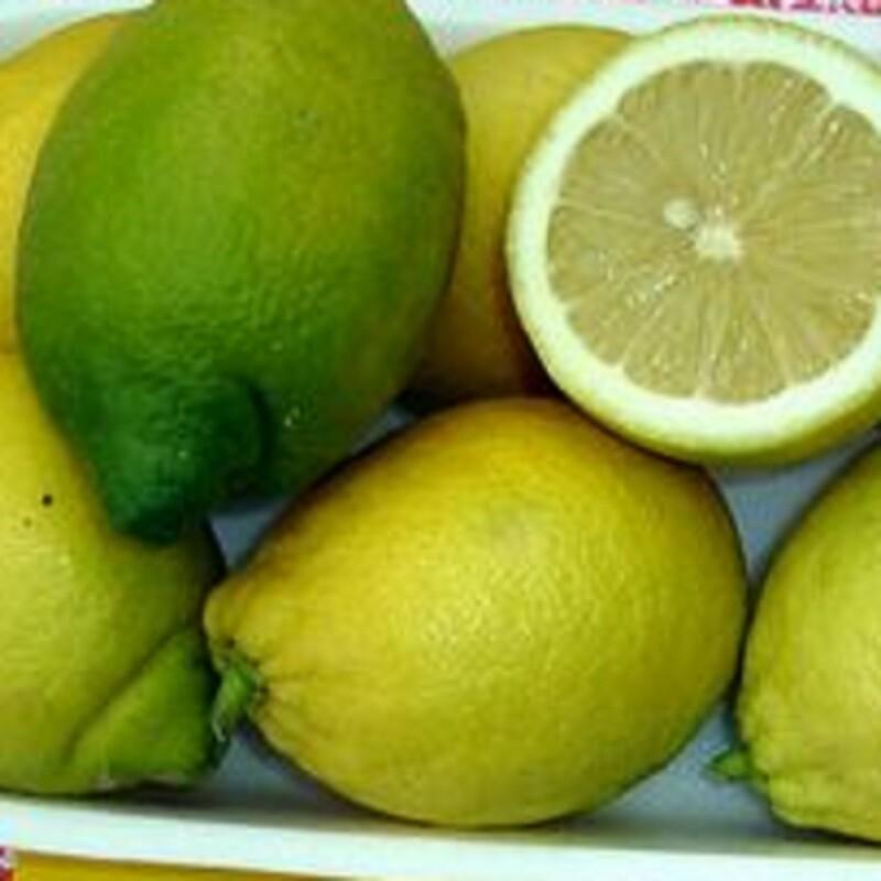 Limoni IGP -3