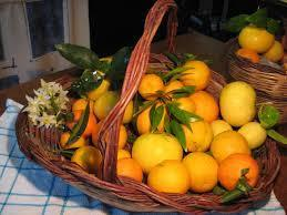 Cassetta 8-kg di Clementine Arance e Limoni