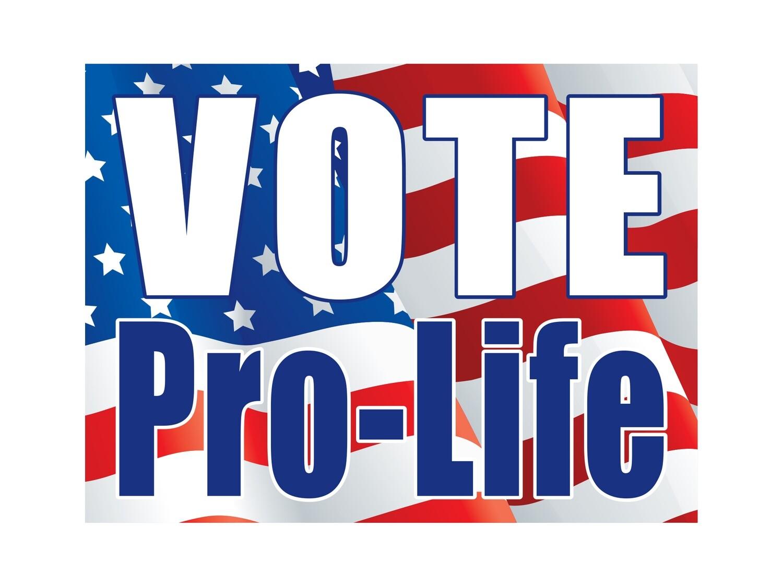 4'x8' Vote Pro Life yard sign