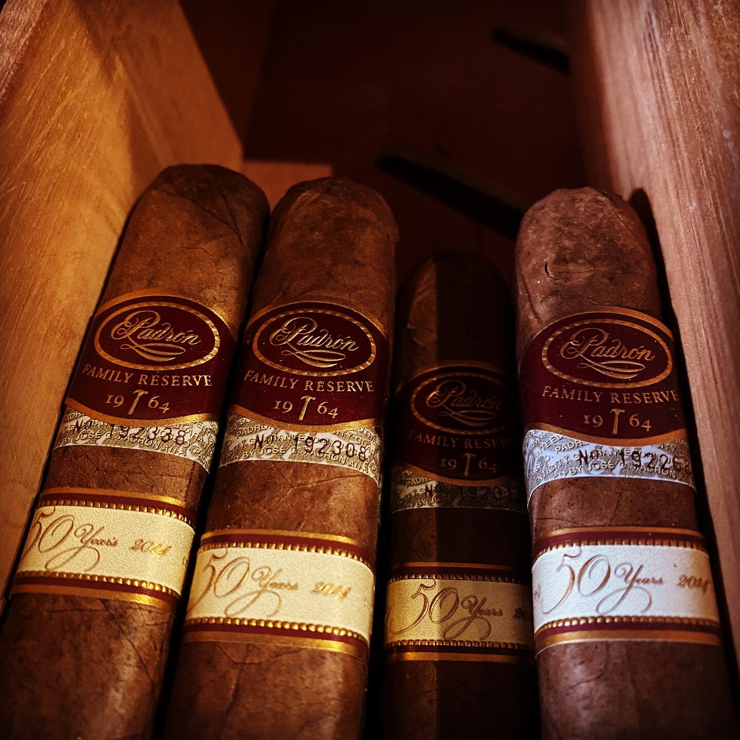 Padron Family Reserve 1964 50 Years Natural, 5x54, 10's