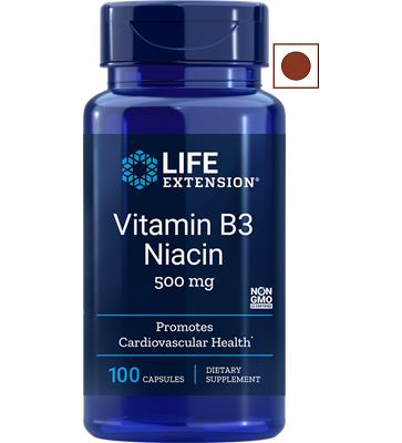 Life Extension Vitamin B3, Niacin 500 Mg, 100 Capsules