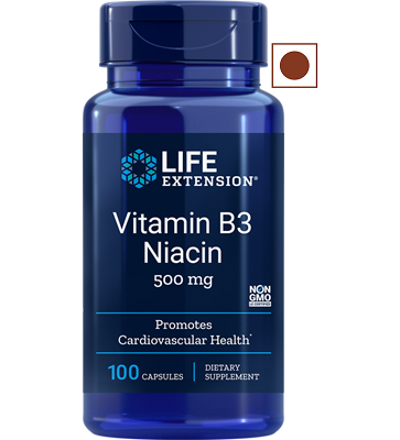 Life Extension Vitamin B3, Niacin 500 Mg, 100 Capsules