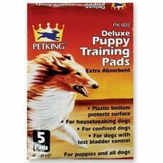 5 Pack Training