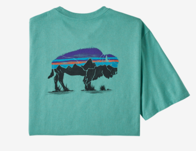 Patagonia M Fitz Roy Bison T-Shirt