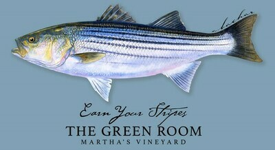 Green Room M's Bio Striper Tee MULTIPLE COLORS AVAILABLE