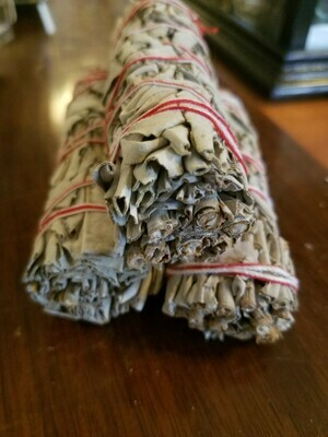 "Smudge California White Sage , 3 pack ( approx 5"")"