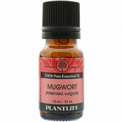 Mugwort Essential Oil -10mls