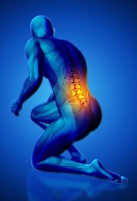 Lower Back Pain - Home Exercise Program