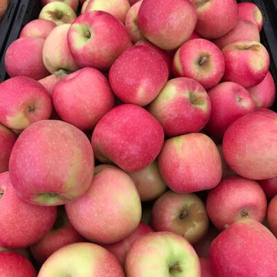 Apples Large Pink Lady
