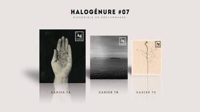 Halogénure #7 - triptyque photographique