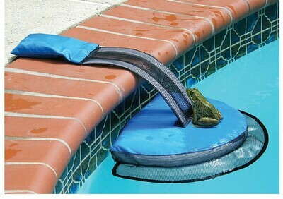 Frog Log Critter Saver