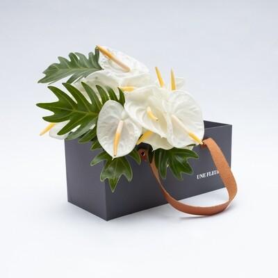 Caixa Presente com de anturios brancos e folhas xanadu