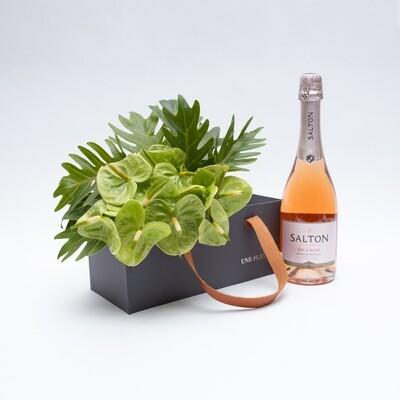 Caixa Presente com de antúrios verdes e espumante rosé