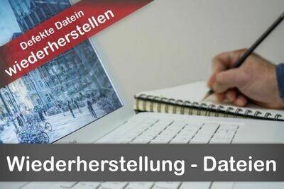 Wiederherstellung defekter Dateien (DWG, etc )