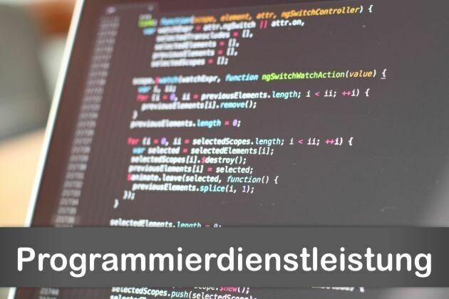 Programmierdienstleistung max. 2h