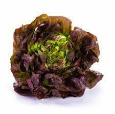 Salade Pommée rouge (6p)