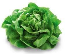 Salade Pommée verte (6p)