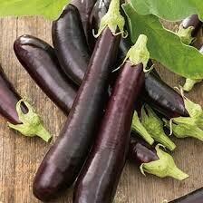 Aubergine Purple long
