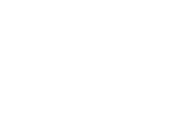Two Beers Brewing Co Online Store