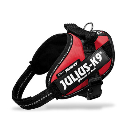 julius K9 Power Harness Red