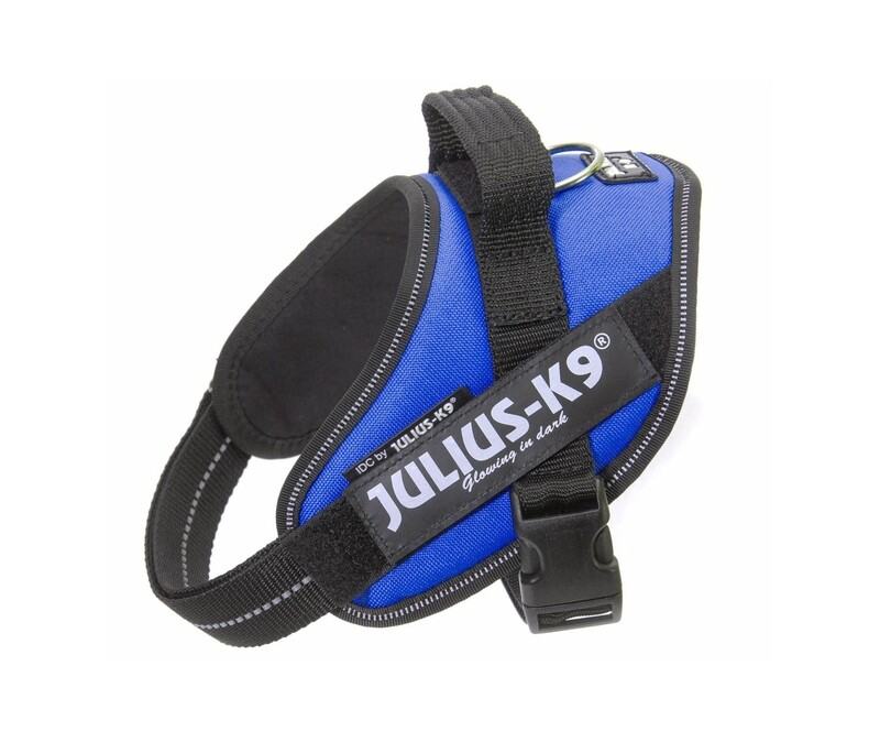 julius K9 Power Harness Blue