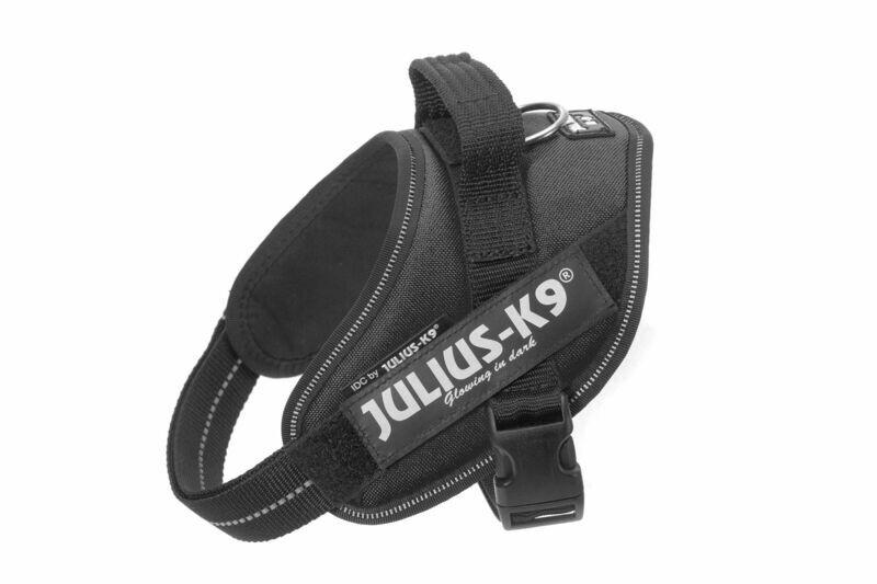 julius K9 Power Harness Black