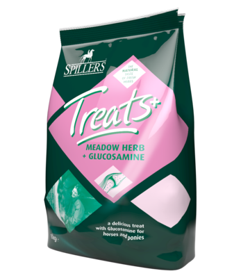Spillers Treats Meadow Herb & Glucosamine Treats