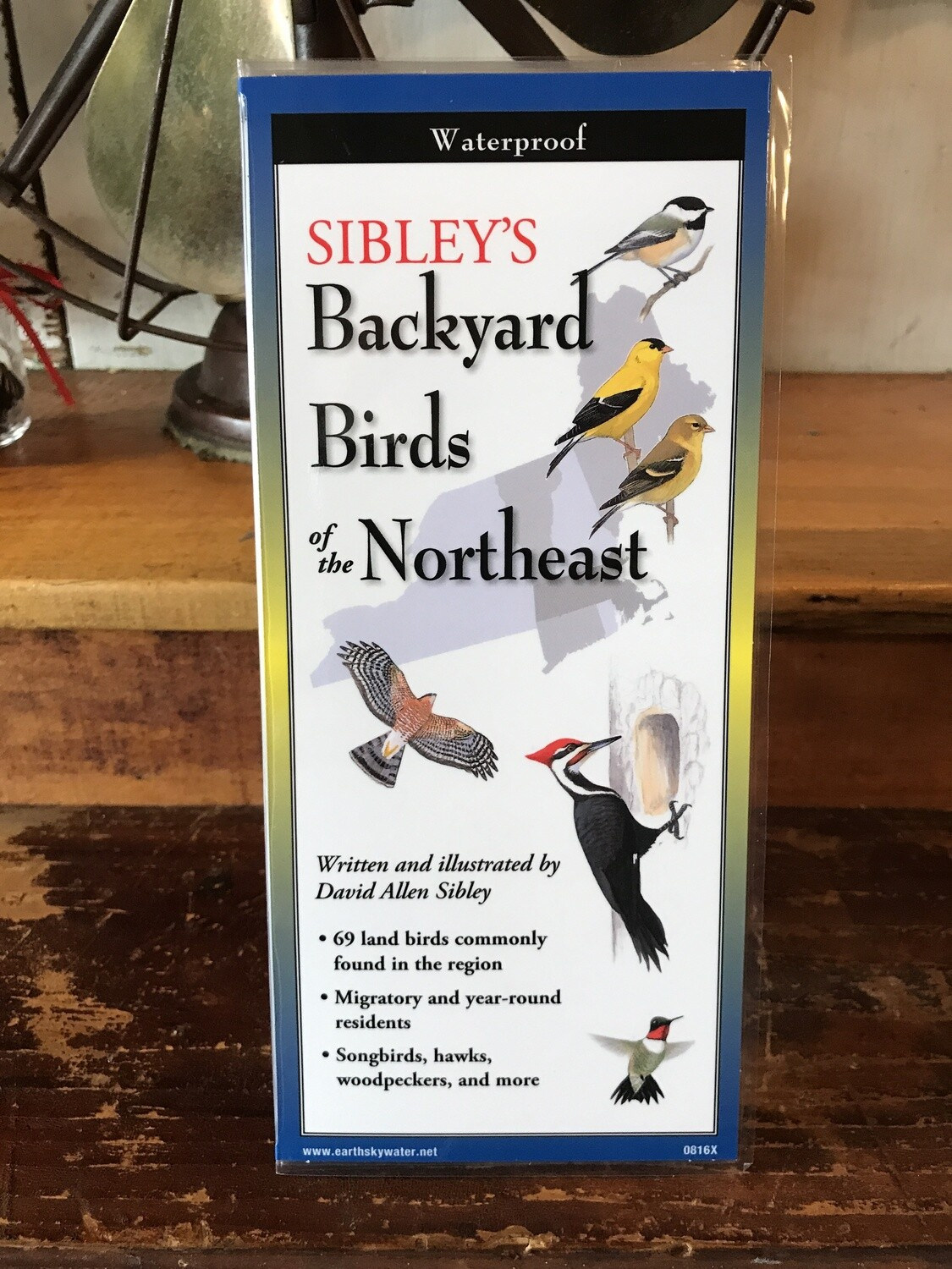 Backyard Birds of NE Guide