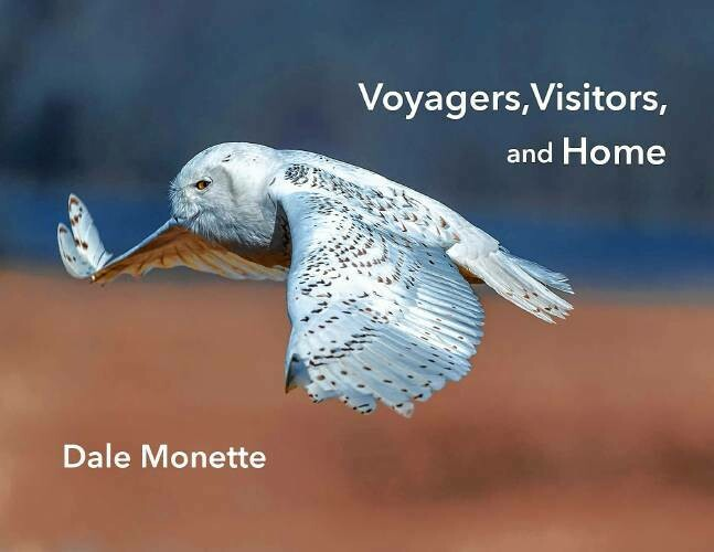 Voyagers, Visitors, and Home Book