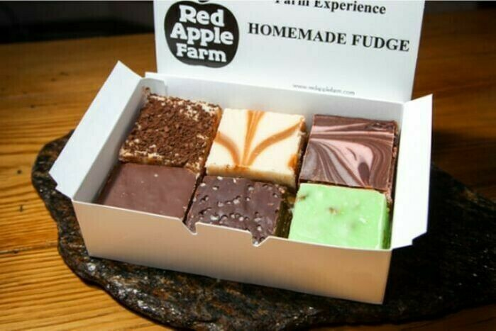 Fudge Special (BUY 4 GET 2 MORE FREE)