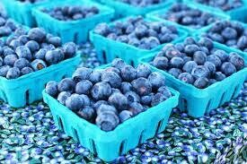 BLUEBERRY CROP SHARE