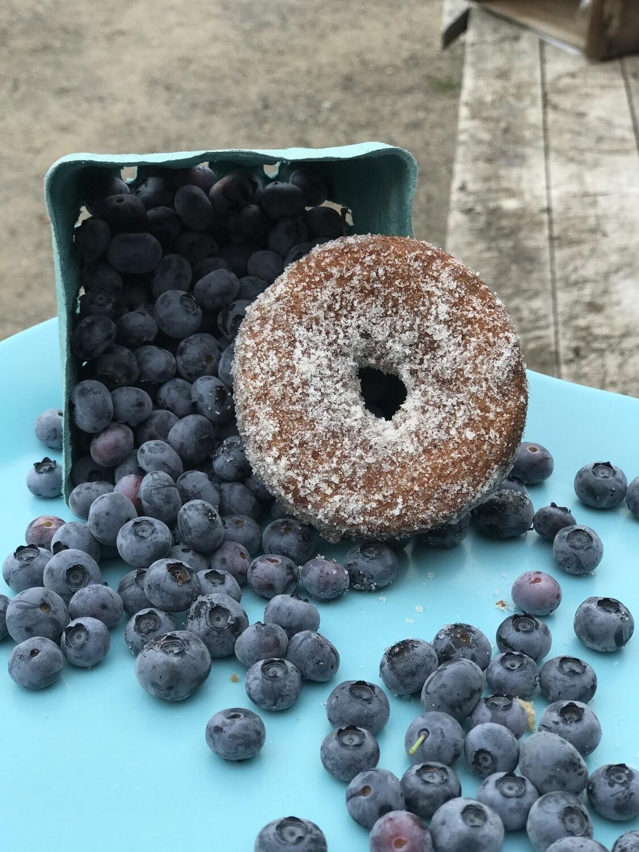 Blueberry Donuts - 1/2 Dozen