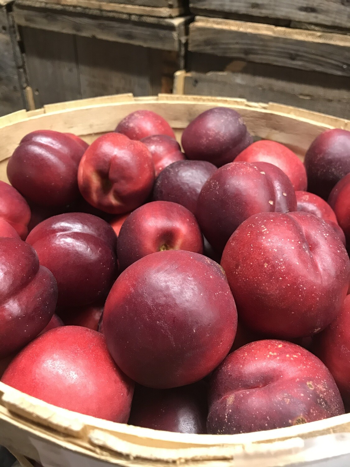 Red NECTARINE - 3 lbs ONLINE
