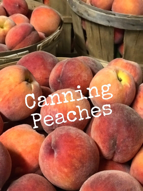 Canning Peaches - 10 lb Bag