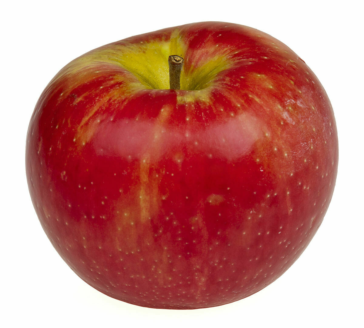 Honey Crisp - 3lb Bag